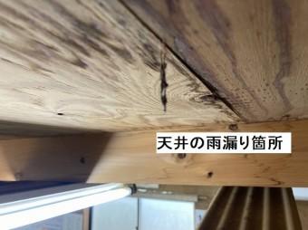 作業小屋に雨漏りしていた天井材部分