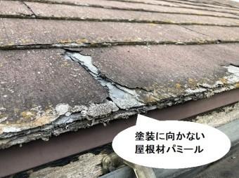 塗装に向かない屋根材であるニチハ社製パミール