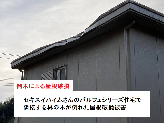 倒木による屋根破損が起きた鉾田市の住宅
