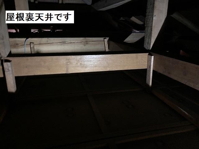 屋根裏天井の様子を確認