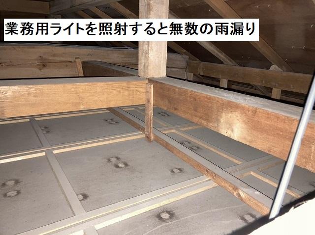 天井裏にライトを照射すると、無数の雨漏り跡が確認できる