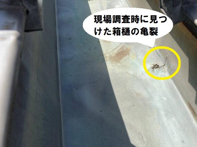 現場調査時に新たに発見した銅箱樋の亀裂