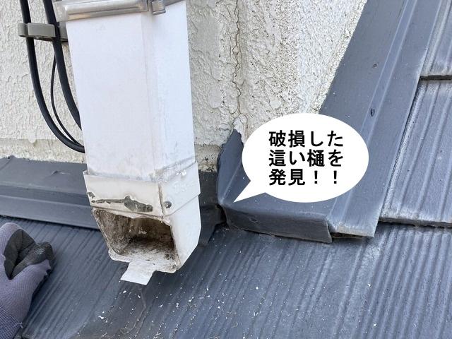 雨樋の補修工事中這い樋の破損を発見