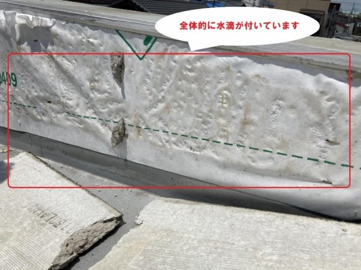水戸市のパラペット雨漏りは散水試験実施と外壁膨れの交換工事で分かった外壁の中に湿気が大量