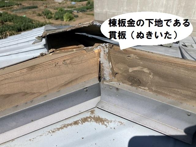 棟板金の下地である貫板の状態