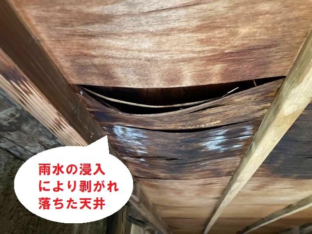 雨水に侵入により剥がれ落ちた天井