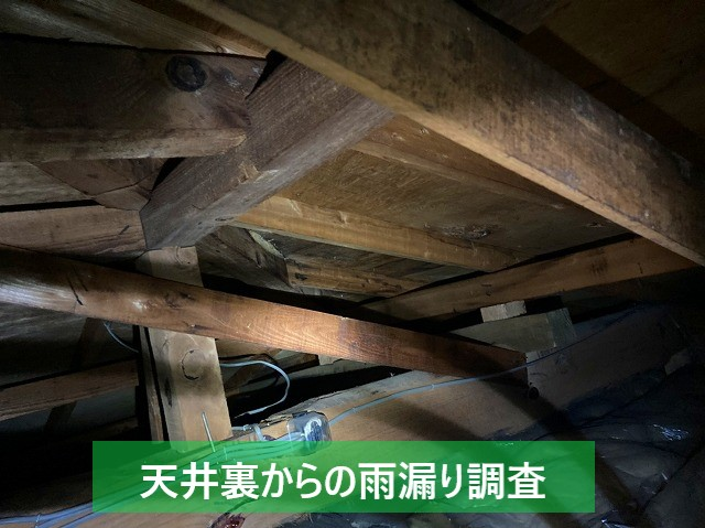 天井裏から行う雨漏り調査