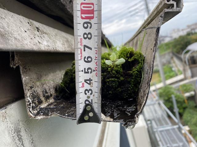 大型雨樋を詰まらせていた苔の高さをスケールで計測してみた