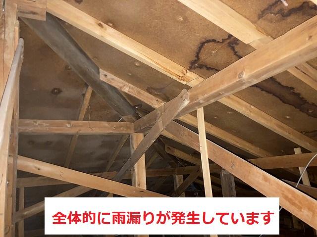 スレート屋根は全体的に雨漏りが起こっています