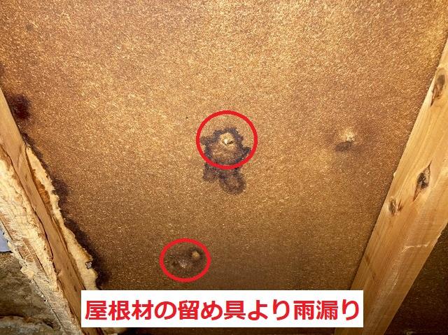 屋根材の留め具より雨漏り