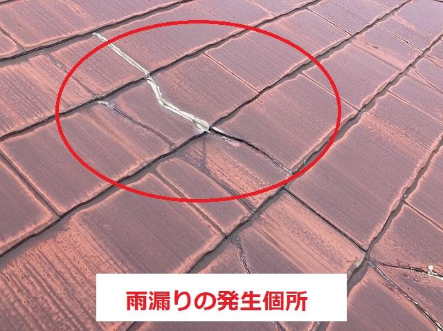 天井に発生した雨漏り箇所の屋根材の亀裂