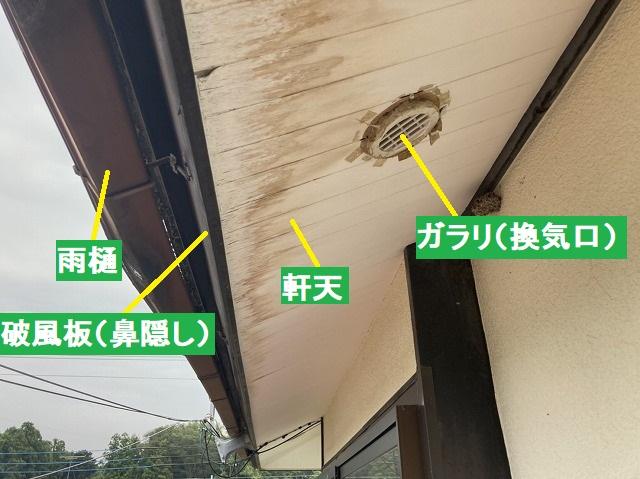 雨樋、破風板、軒天、ガラリの箇所