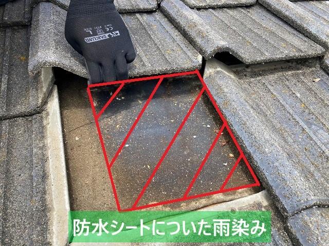 常陸太田市のセメント瓦を捲ると防水シートに雨染みがありました