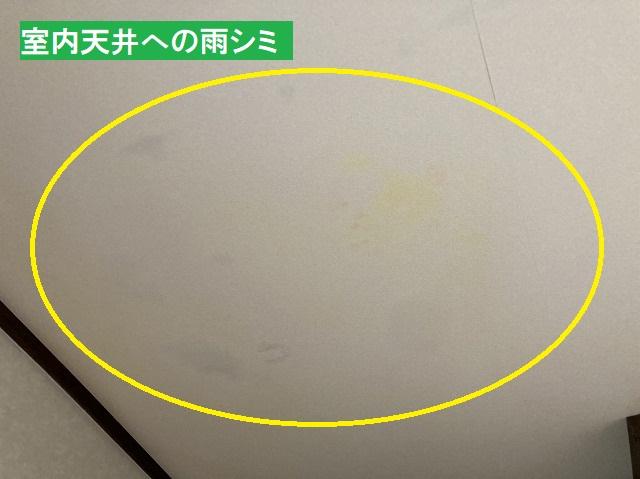 白い天井に雨シミが発生