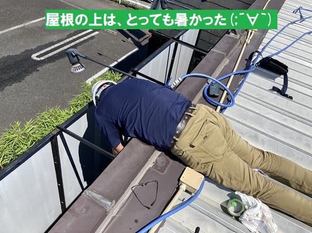 折板屋根に寝そべって調査を行うスタッフ