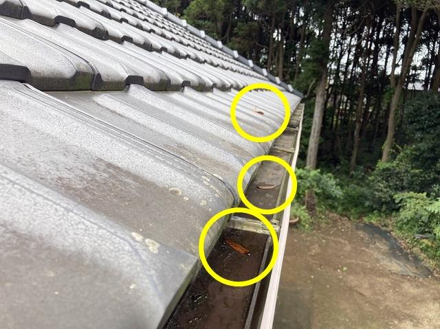 雨樋落ち葉除けネット設置依頼