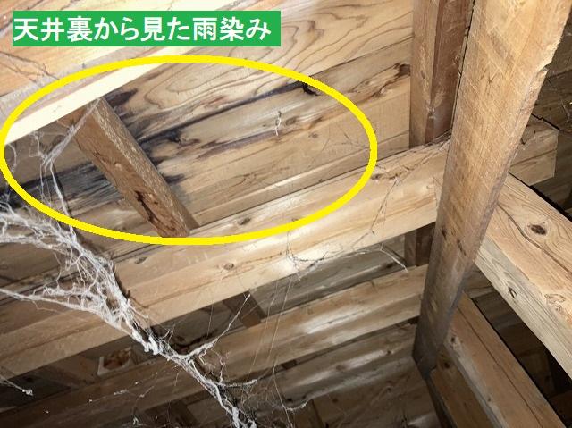 天井裏から見た、ザラ板に残る雨染み