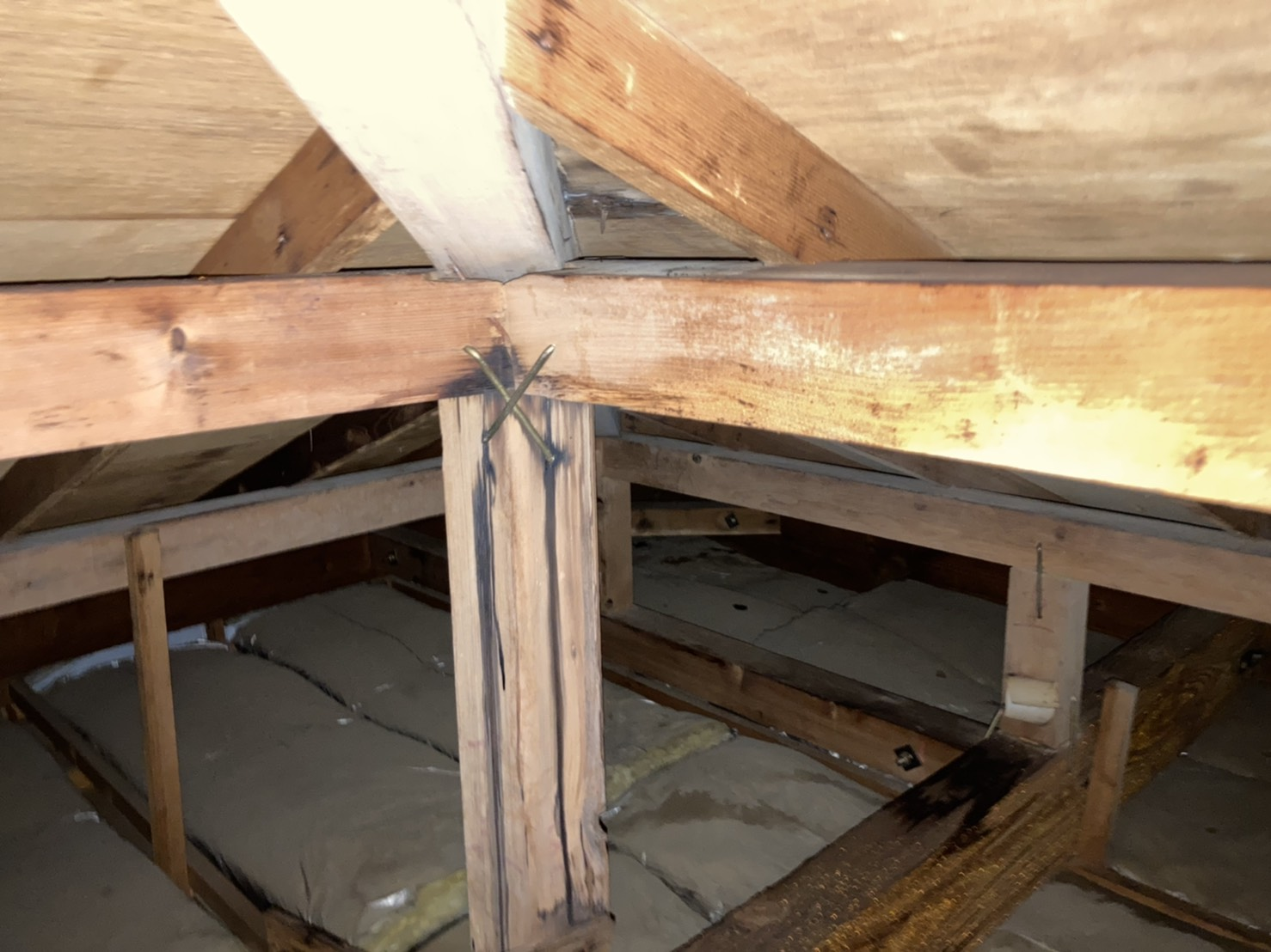雨漏り跡が残る天井裏