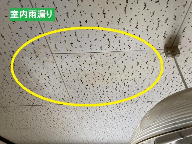 洋室天井である石膏ボードにできた雨染み