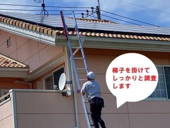 古河市のお客様は屋根に住み着いたスズメの声がうるさいので、屋根の調査を梯子を使用し点検します