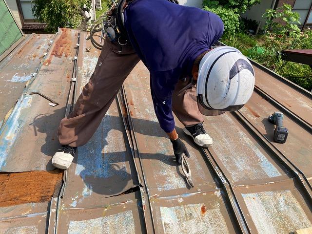 瓦棒屋根を板金ハサミで解体する職人
