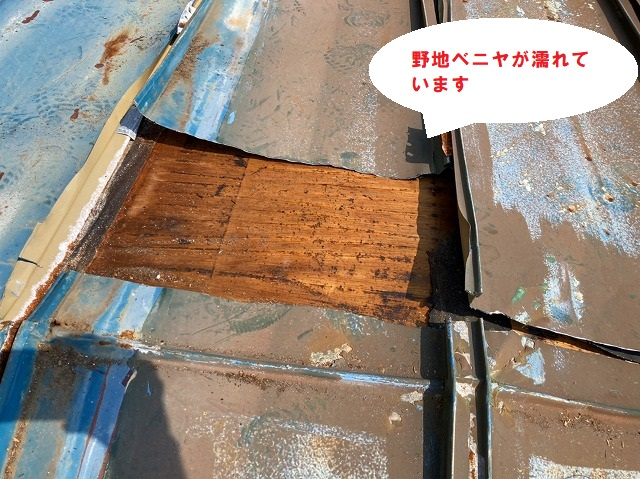 瓦棒屋根を捲ると野地ベニヤが漏水して剥離しています