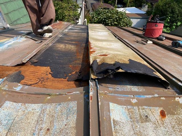 瓦棒屋根を捲ると野地ベニヤと防水シートの劣化が分かります