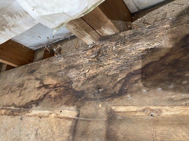 雨漏りしていた上部のベランダ床の下地