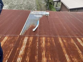 台風により捲り上がった龍ヶ崎市の現場の波トタン