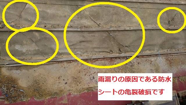 雨漏りの原因となった防水シートの亀裂破損