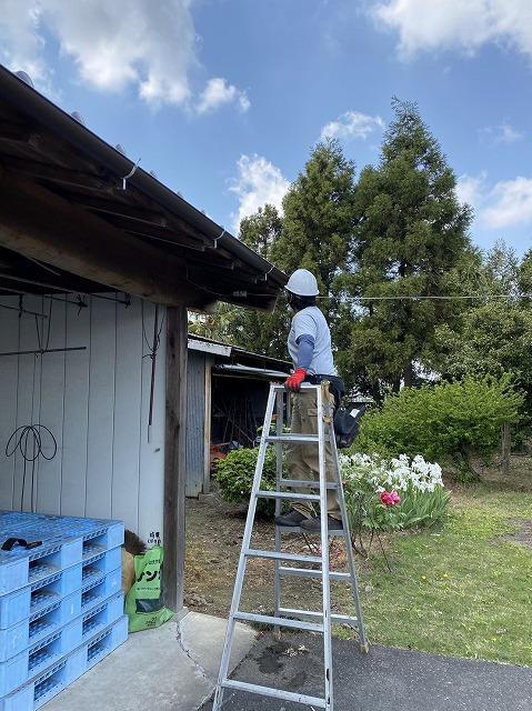 脚立に乗り倉庫の東側を施工する職人