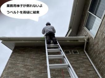 梯子が倒れないように軒樋にベルトを結ぶ職人