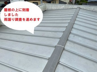 水戸市のパラペット屋根雨漏り調査で外屋根上から調査します