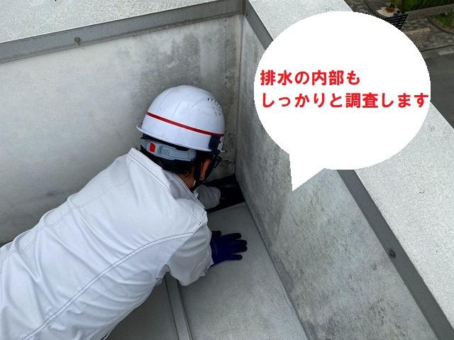 水戸市のパラペット屋根雨漏り調査で排水の内部も確認していきます