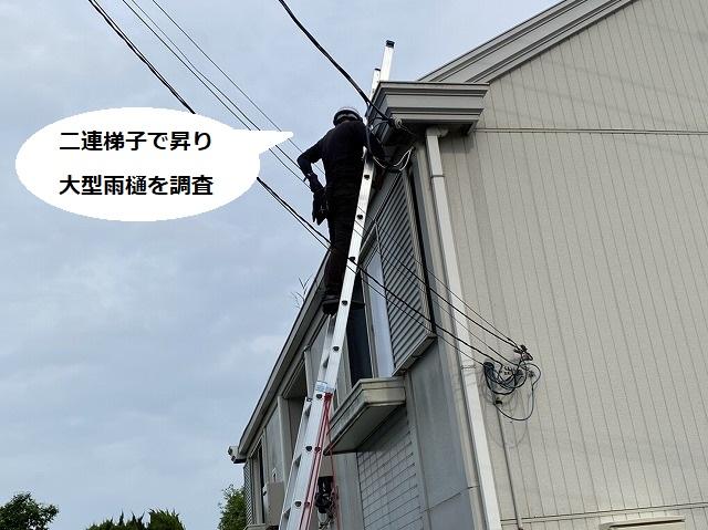 アパートの大型雨樋を調査する為に梯子に登るスタッフ
