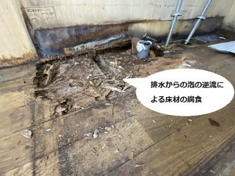 排水からの泡の逆流により床材が腐食している