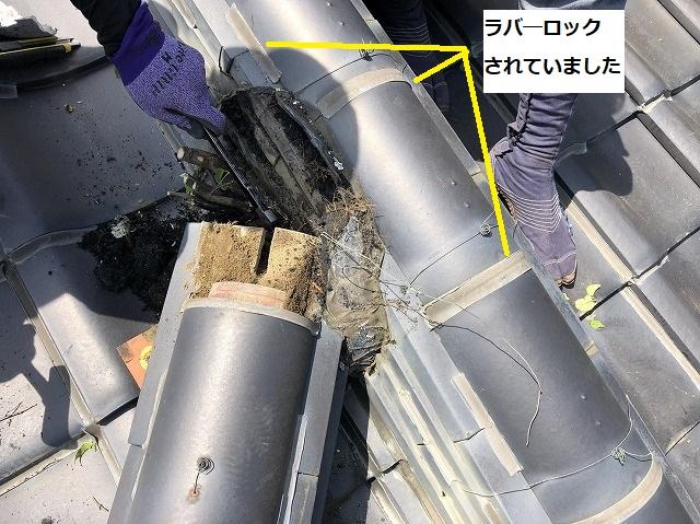 ラバーロックされた冠瓦と降り棟の緩衝部