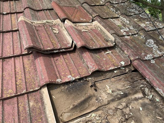 セメント桟瓦を4枚捲った時の屋根下地は防水シートが破損し野地板が露出