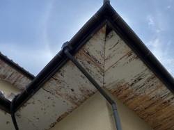 水戸市の施工前のプリントが剥がれた軒天