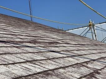 軒先側から斜めに見上げる大きな屋根