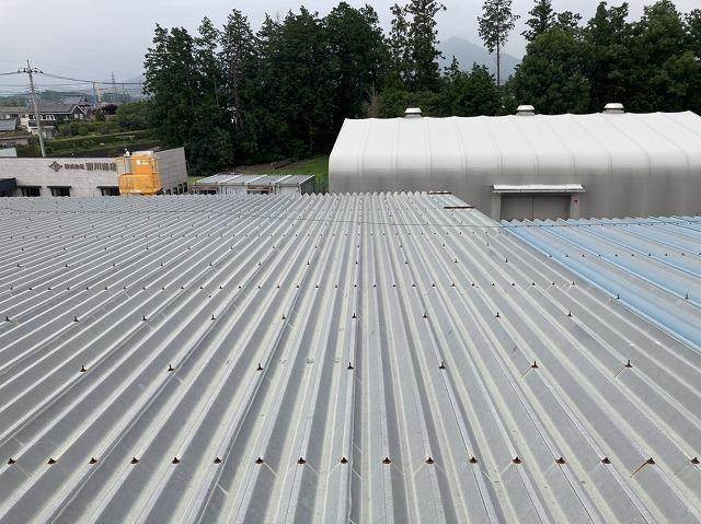 太陽光を設置する折板屋根は979㎡の大きな屋根