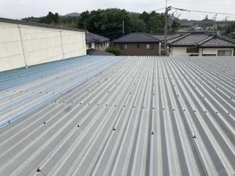 太陽光を設置する折板屋根は増築され4棟が連なっている