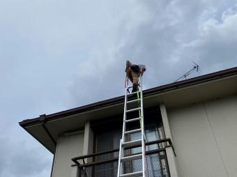 水戸市のスレート屋根に二連梯子で登るところ