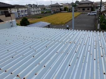水戸市の店舗様の折板屋根のボルト錆び