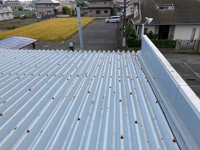 水戸市の店舗様雨漏り調査で屋根を確認します