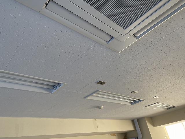 天井材ジプトーンへの防カビ塗装が完了した天井