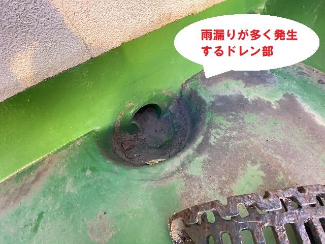 屋上防水で雨漏りが多いドレン部