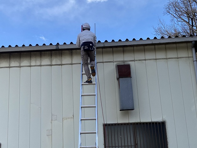 梯子で折板屋根に登るヘルメットを被ったスタッフ