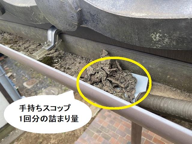 手持ちスコップで雨樋の詰まり土を除去していく
