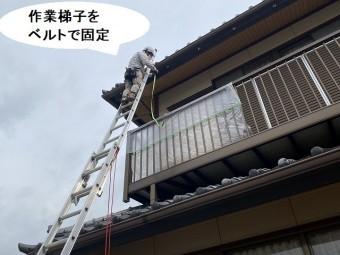 作業用の梯子を軒先に掛け、ベルトで固定するスタッフ